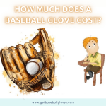 how much does a baseball glove cost